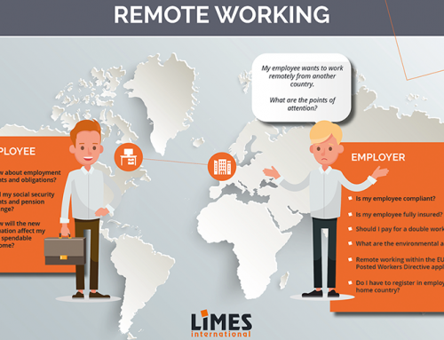 Remote working | Key points of attention